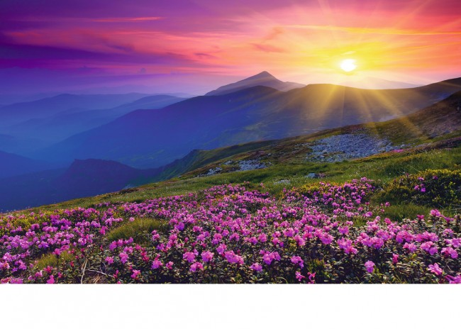 Puzzle Ravensburger Montañas al Alba de 1000 Piezas