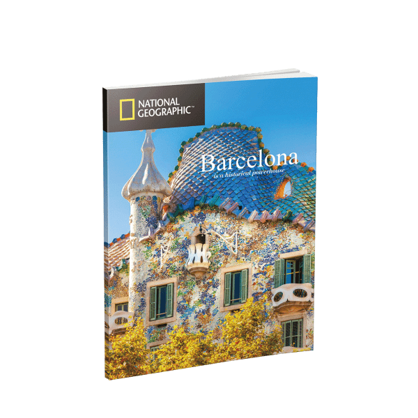 Puzzle 3D World Brands La Sagrada Familia (National Geographic)