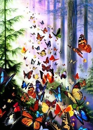 Puzzle Anatolian Bosque de Mariposas de 1000 Piezas