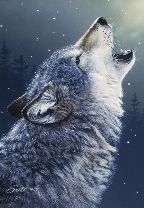 Puzzle Anatolian El Aullido del Lobo de 500 Piezas