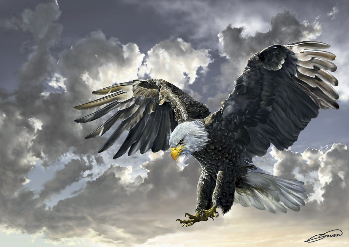 Puzzle Art Puzzle Balck and While, Aguila Americana 500 Piezas