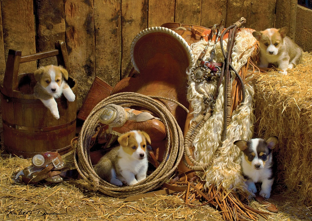 Puzzle Art Puzzle Cachorros en la Granja de 1000 Piezas