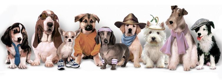 Puzzle Art Puzzle Curiosos Cachorros de 1000 Piezas