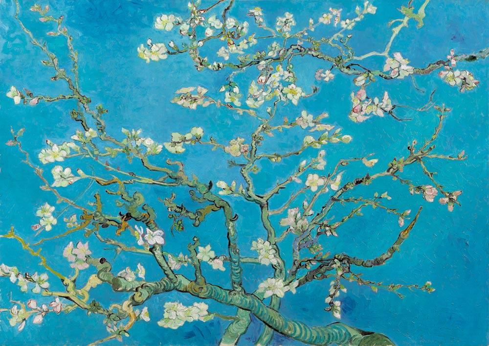 Puzzle Bluebird Almendro en Flor de 1000 Piezas
