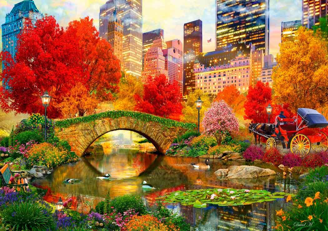 Puzzle Bluebird Central Park, Nueva York de 1000 Piezas