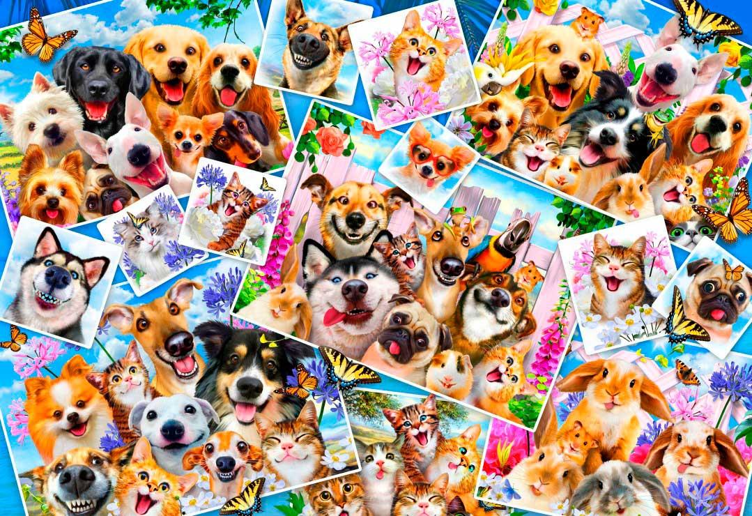 Puzzle Bluebird Collage de Selfies de Mascotas de 260 Piezas