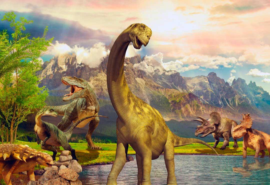 Puzzle Bluebird Dinosaurios de 260 Piezas