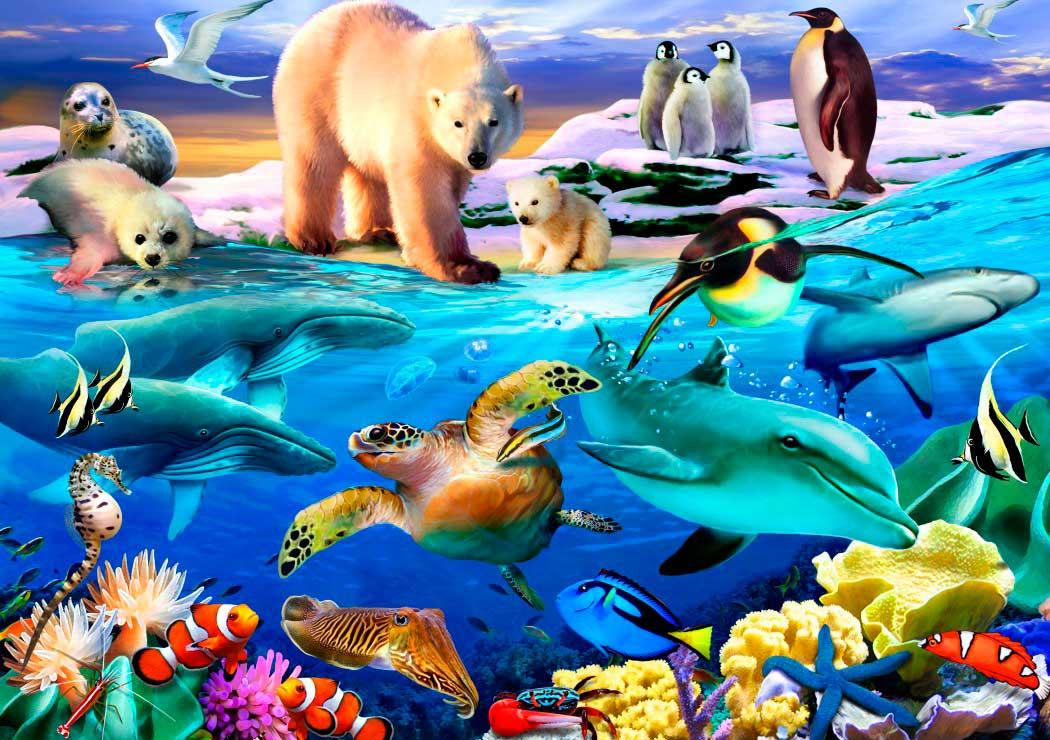 Puzzle Bluebird Océanos de Vida de 1000 Piezas