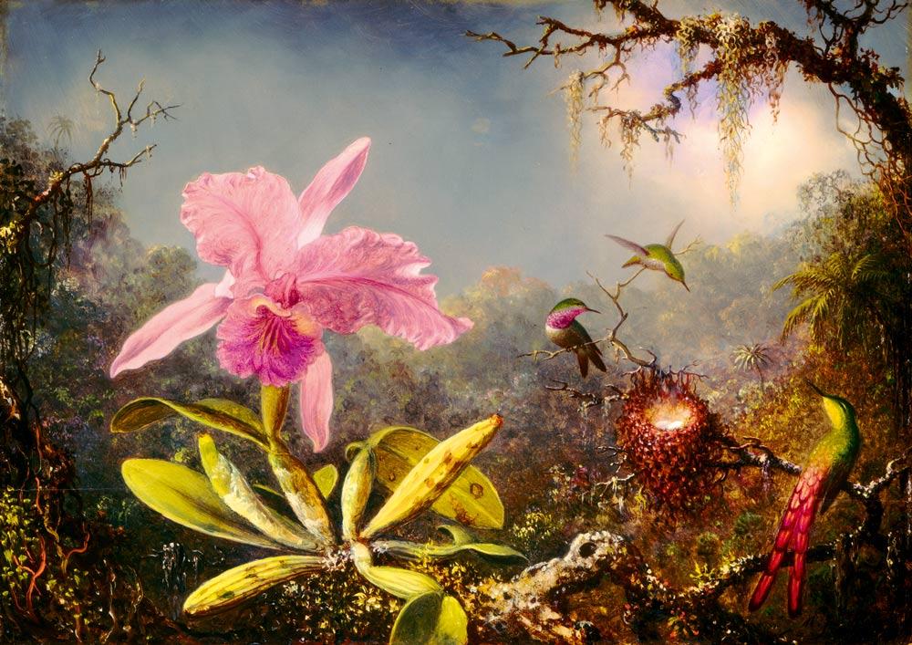 Puzzle Bluebird Orquídea Cattleya y Tres Colibríes de 1000 Pieza