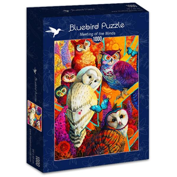 Puzzle Bluebird Reunión de Mentes de 1000 Piezas