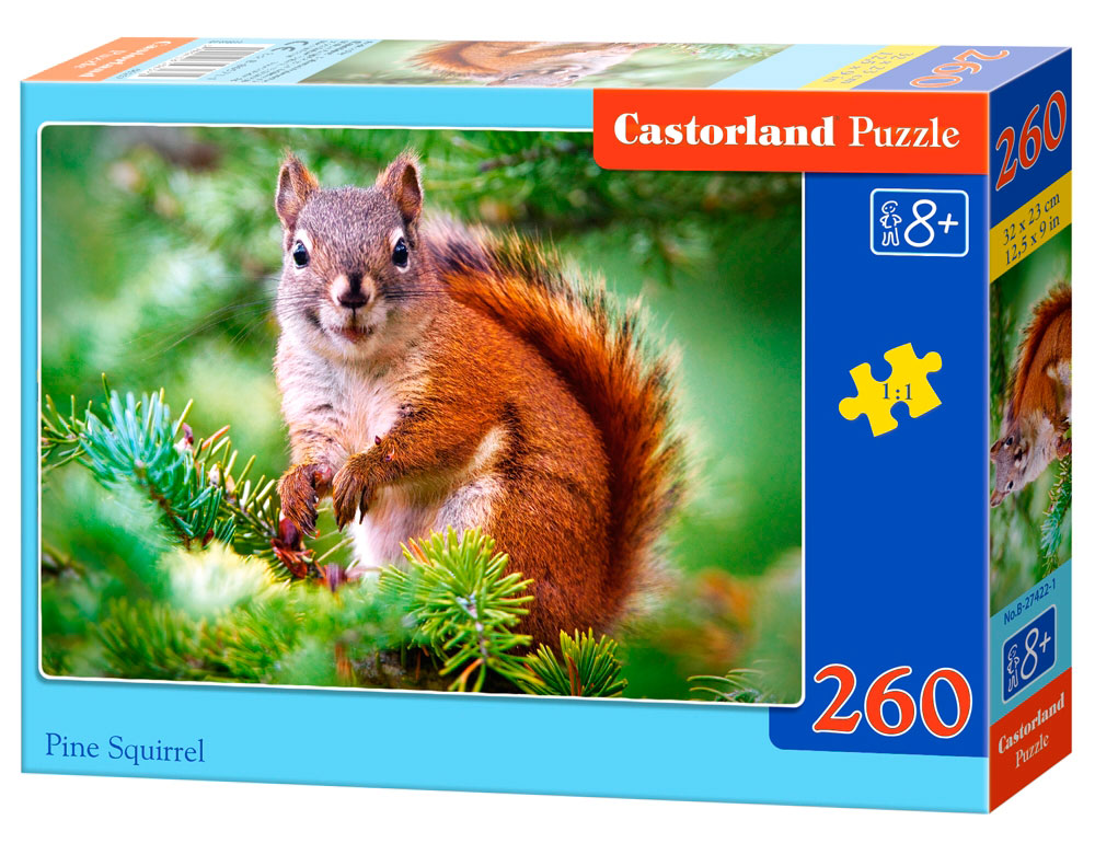 Puzzle Castorland Ardilla de Pino de 260 Piezas