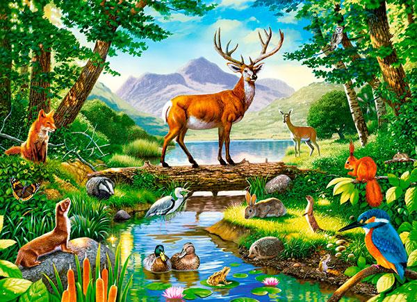 Puzzle Castorland Armonía en el Bosque de 300 Piezas