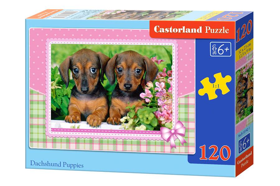 Puzzle Castorland Cachoros de Perros Salchichas 120 Piezas
