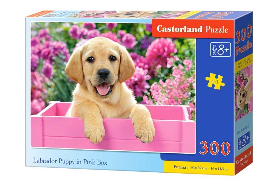 Puzzle Castorland Cachorro de Labrador en Cesta Rosa 300 Piezas