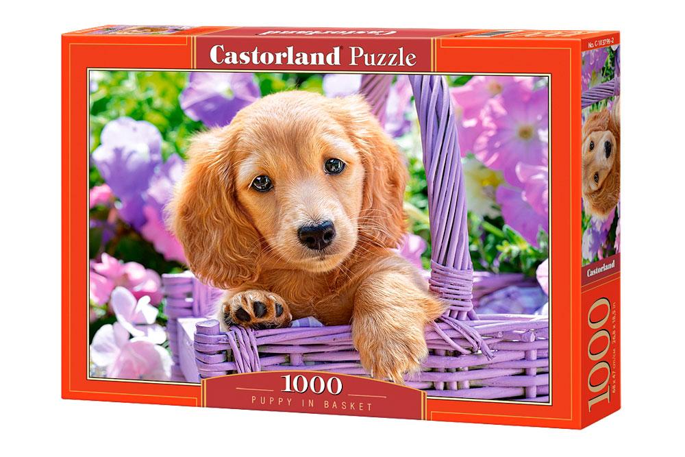 Puzzle Castorland Cachorro en Cesta de 1000 Piezas