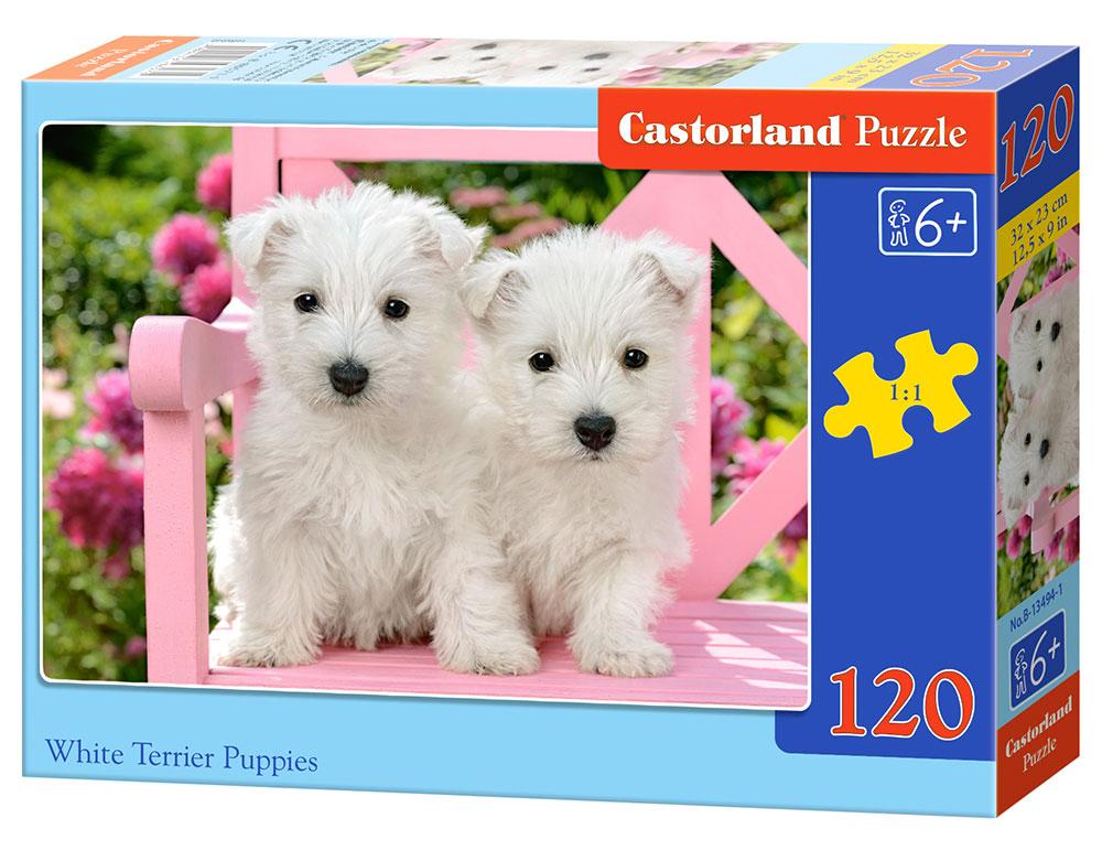 Puzzle Castorland Cachorros Blancos Terrier de 120 Piezas