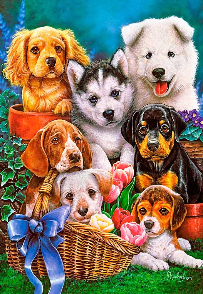 Puzzle Castorland Cachorros de 1000 Piezas