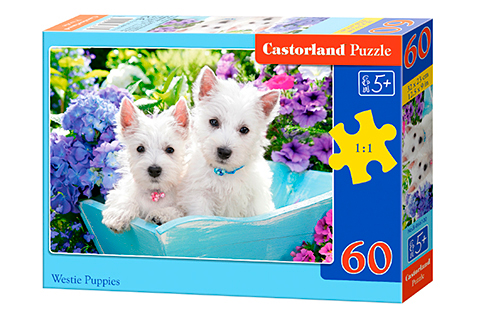 Puzzle Castorland Cachorros de Westie de 60 Piezas