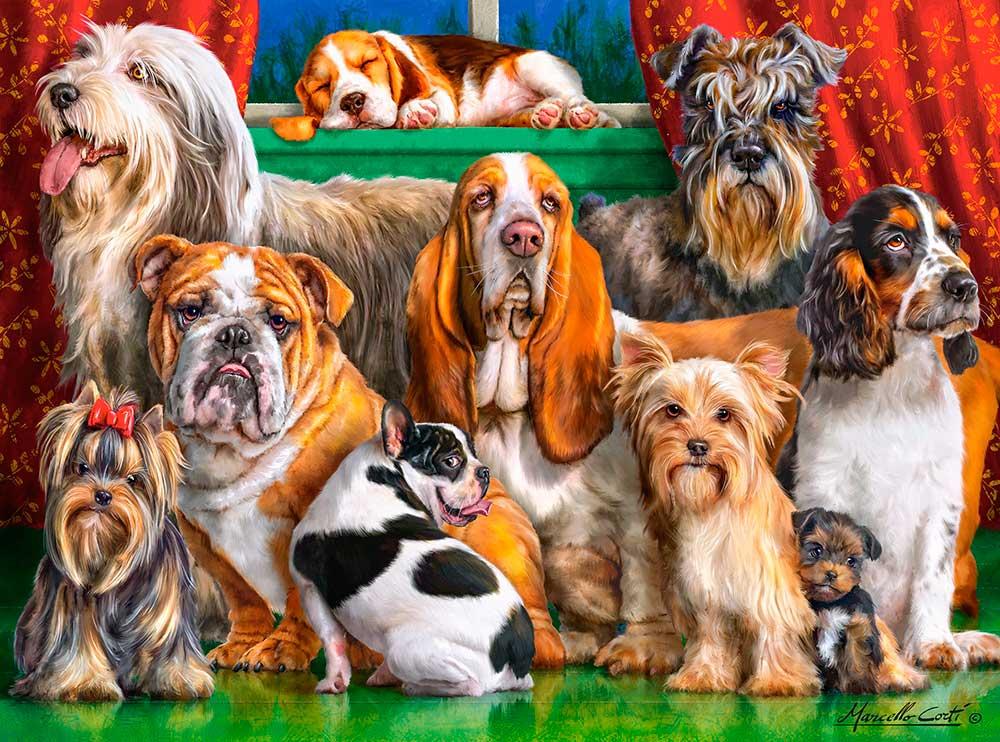 Puzzle Castorland Club de Perros de 3000 Piezas