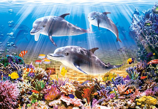 Puzzle Castorland Delfines Bajo el Agua de 500 Piezas