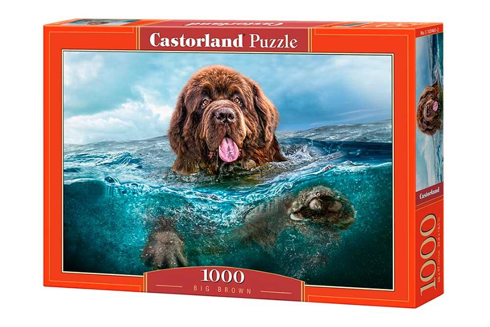 Puzzle Castorland El Naufrago de 1000 Piezas