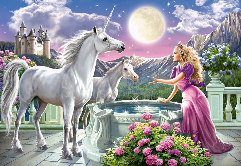 Puzzle Castorland Encuentro Princesa y Unicornios 1000 Piezas