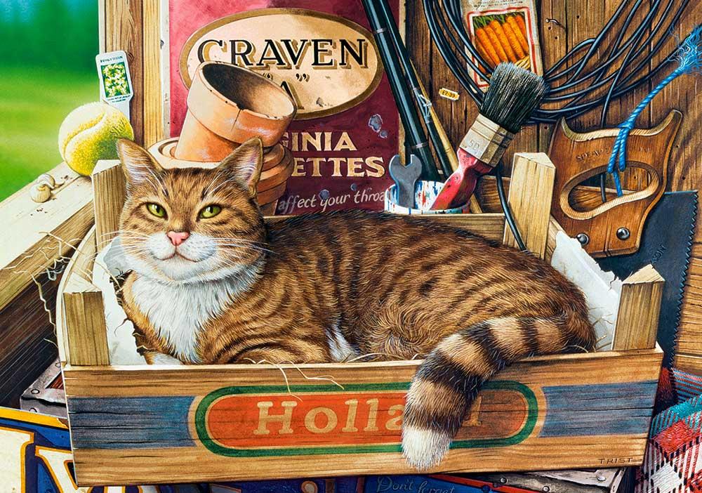 Puzzle Castorland Fothergill, El Gato en la Caja de 500 Piezas