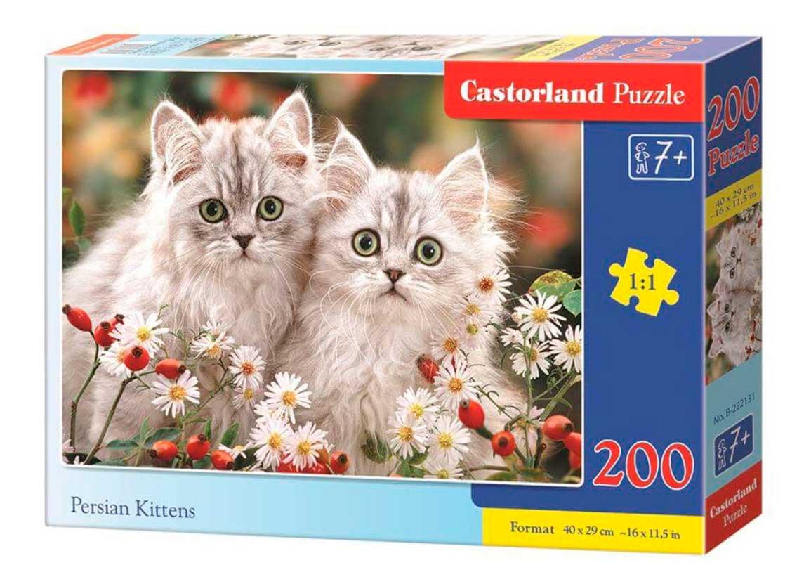 Puzzle Castorland Gatitos Persas de 200 Piezas