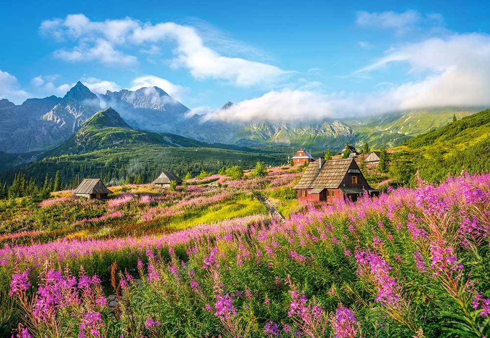 Puzzle Castorland Hala Gasienicowa, Tatra, Polonia de 1000 Pzs