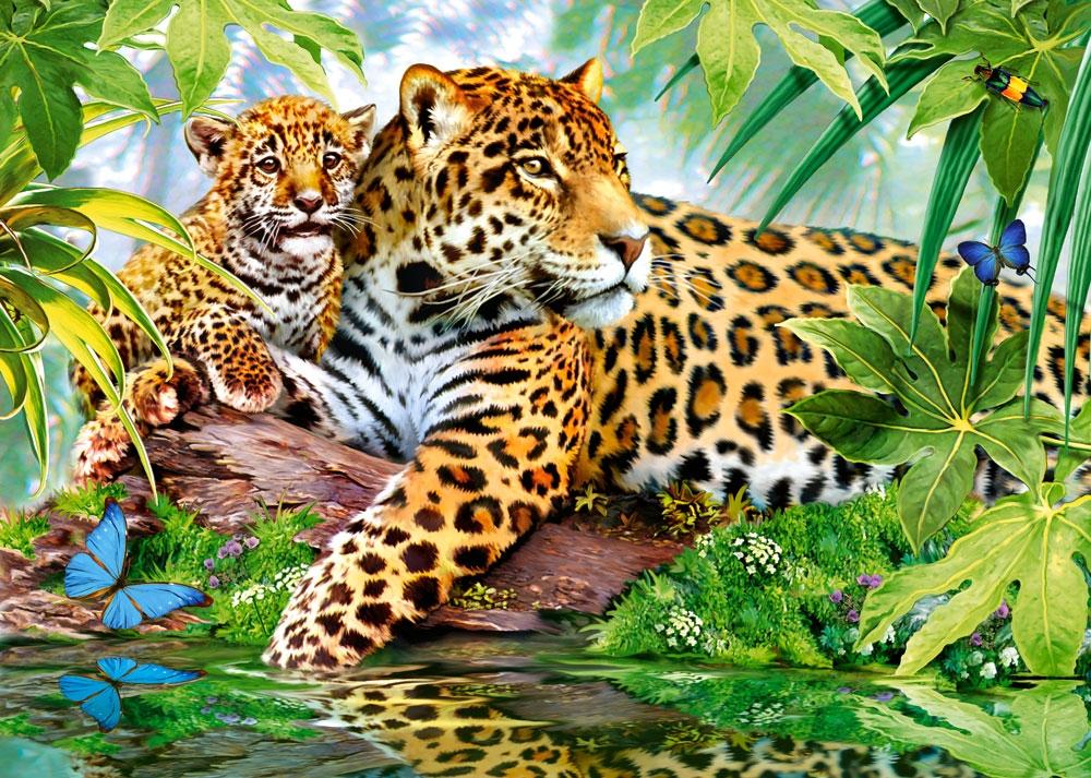 Puzzle Castorland Jaguares de 500 Piezas