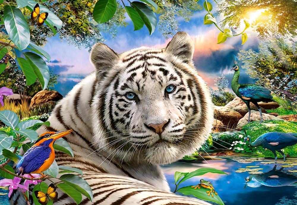 Puzzle Castorland La Mirada del Tigre de 1500 Piezas
