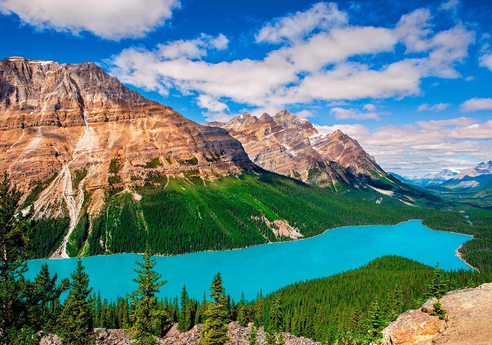 Puzzle Castorland Lago Peyto, Canada de 500 Piezas
