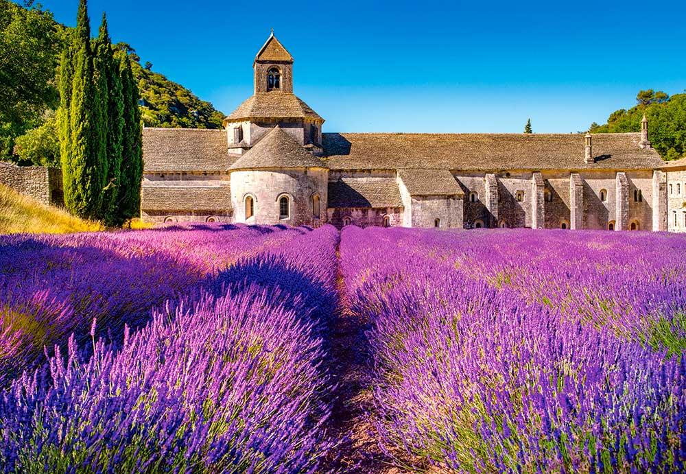 Puzzle Castorland Lavandas en Notre Dame de Senanque de 1000 Pzs