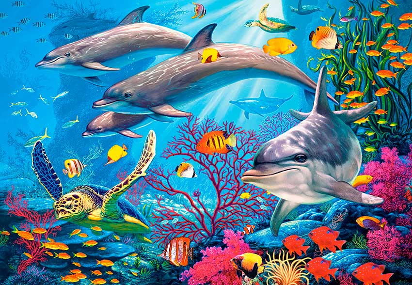Puzzle Castorland Los Secretos del Arrecife 1500 Piezas