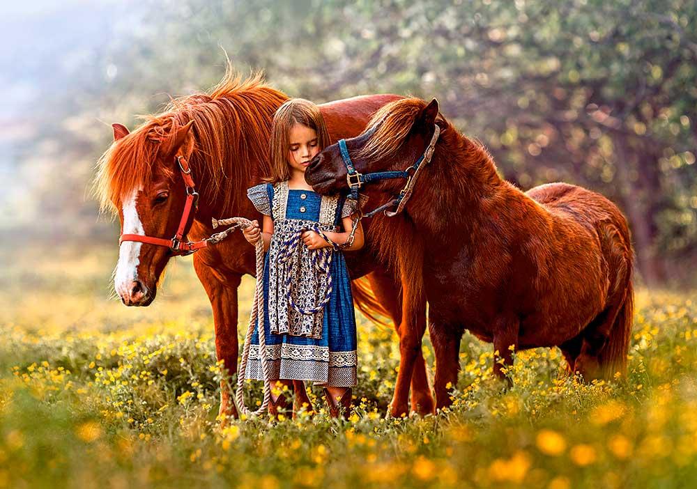 Puzzle Castorland Mi Pequeño Pony de 500 Piezas