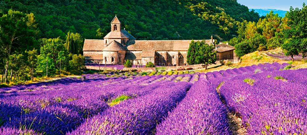 Puzzle Castorland Notre Dame de Senanque, Francia de 600 Pzs