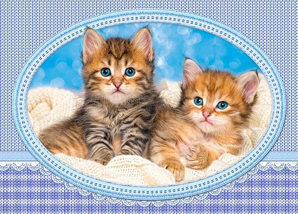 Puzzle Castorland Pareja de Gatitos en la Manta 120 Piezas