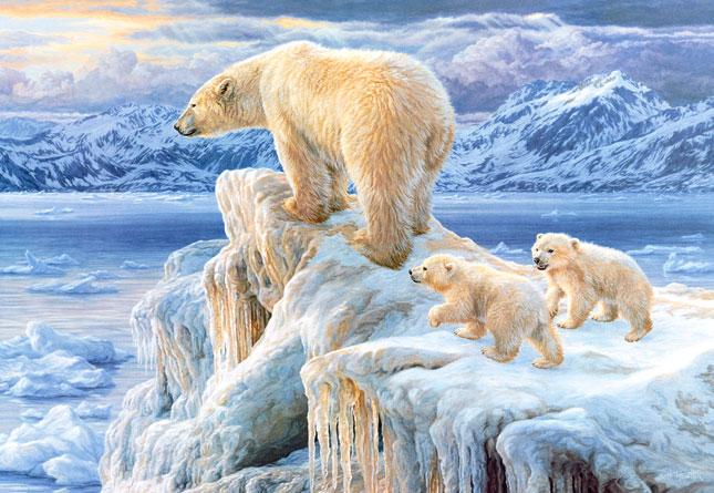 Puzzle Castorland Reino Artico de 1000 Piezas