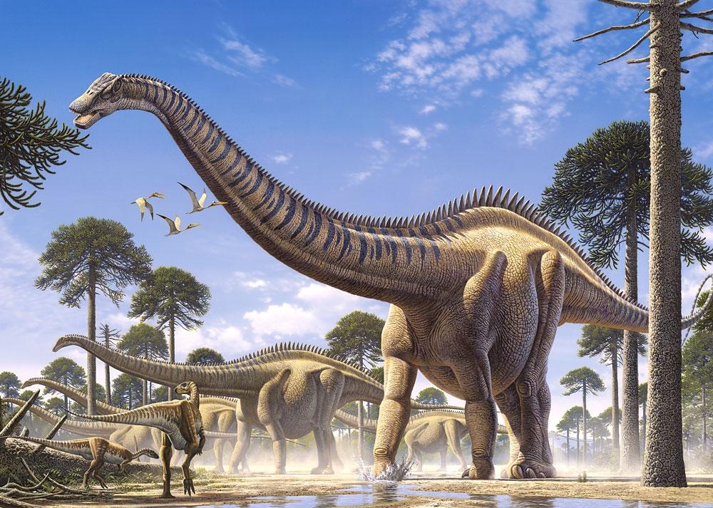 Puzzle Castorland Supersaurus de 1000 Piezas