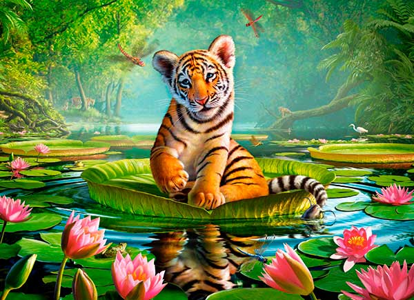 Puzzle Castorland Tigre Lily de 300 Piezas
