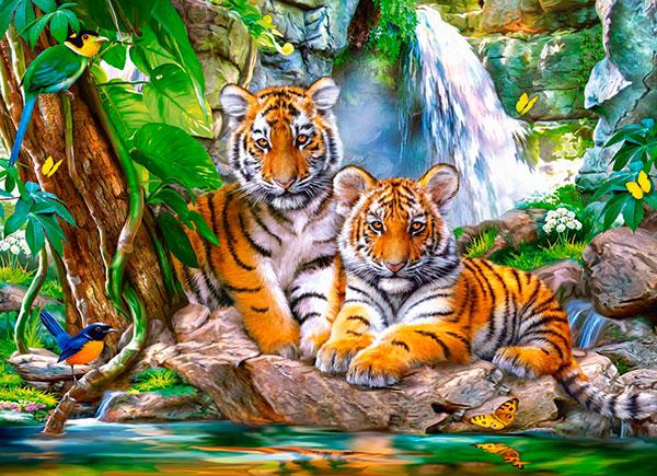 Puzzle Castorland Tigres en la Cascada de 300 Piezas
