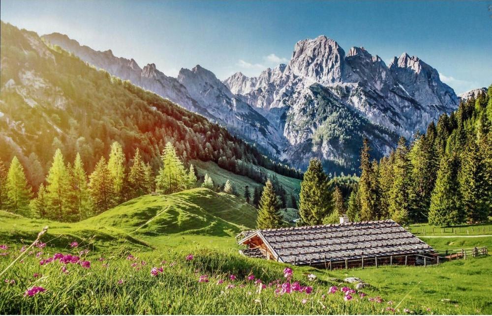 Puzzle Castorland Verano en los Alpes de 500 Piezas