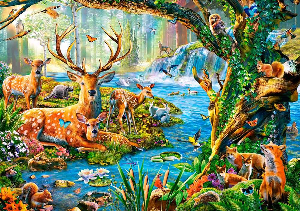 Puzzle Castorland Vida del Bosque de 500 Piezas
