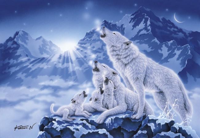 Puzzle Clementoni Famila de Lobos en la Noche de 1000 Piezas