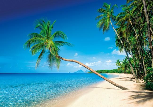 Puzzle Clementoni Isla Martinica de 1500 Piezas