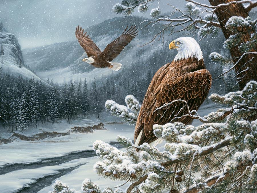 Puzzle Cobble Hill Águilas en Invierno de 500 Piezas