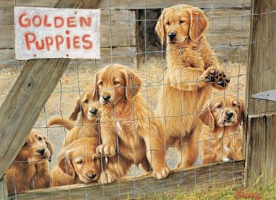 Puzzle Cobble Hill Cachorros de Oro de 500 Piezas