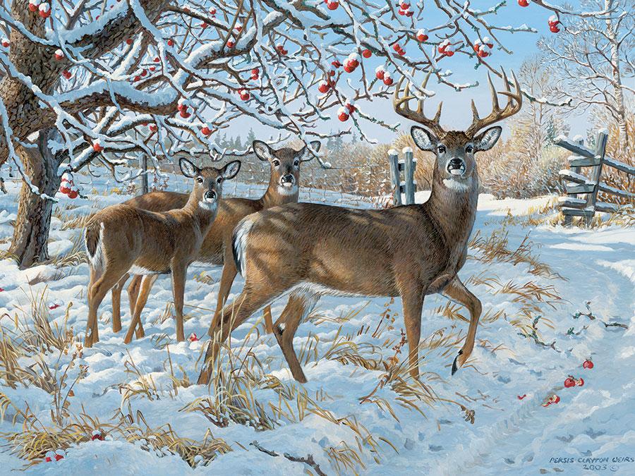 Puzzle Cobble Hill Ciervo en Invierno de 500 Piezas