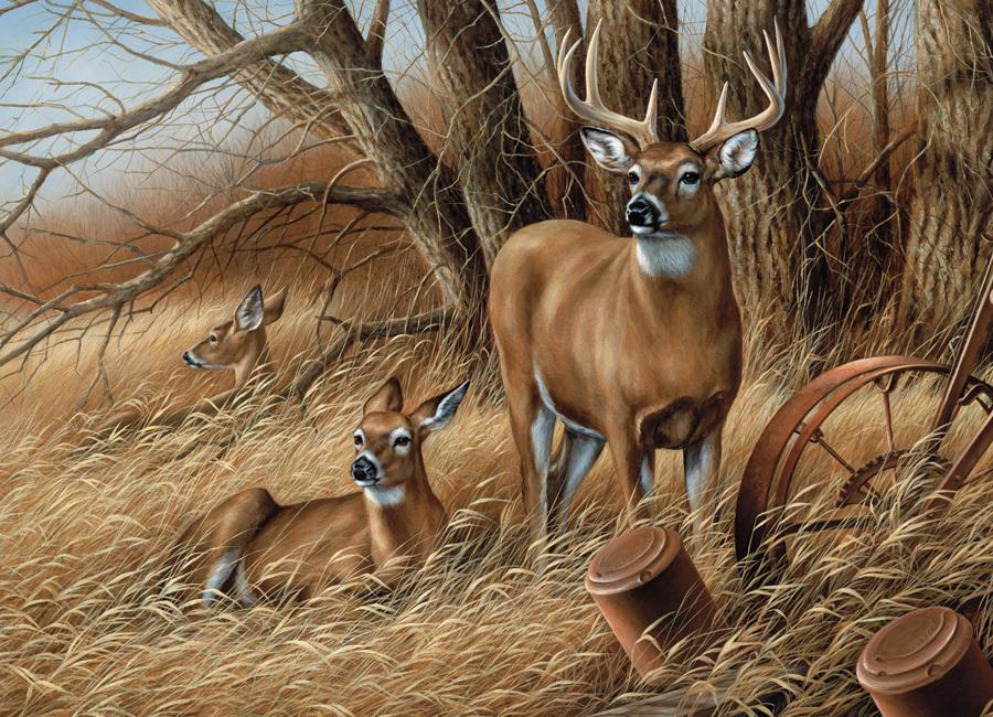 Puzzle Cobble Hill Ciervos en Libertad de 1000 Piezas