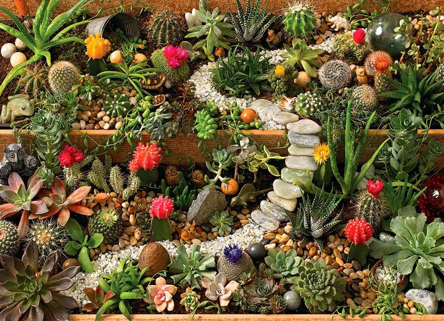 Puzzle Cobble Hill Jardín de Cáctus de 1000 Piezas